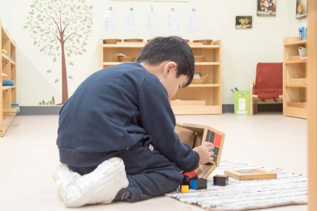 MONTESSORI IN THE MEDIA
